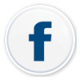 Facebook_Iconbis